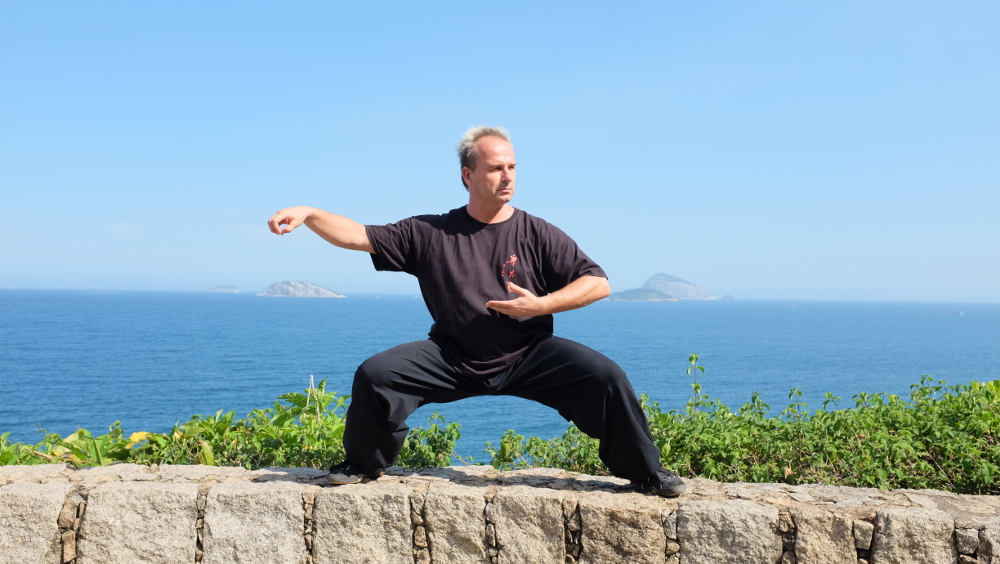Jan Silberstorff, Chen Taijiquan, WCTAG