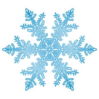 Fit in den Winter - Lassen Sie Ihr Immunsystem testen