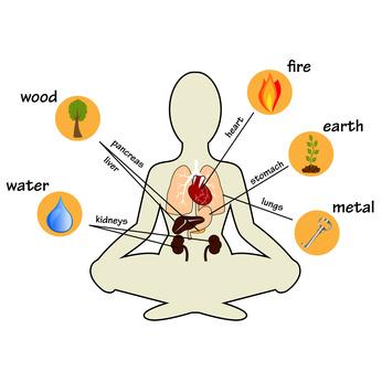 Wuxing - die fünf Wandlungsphasen der chinesischen Medizin